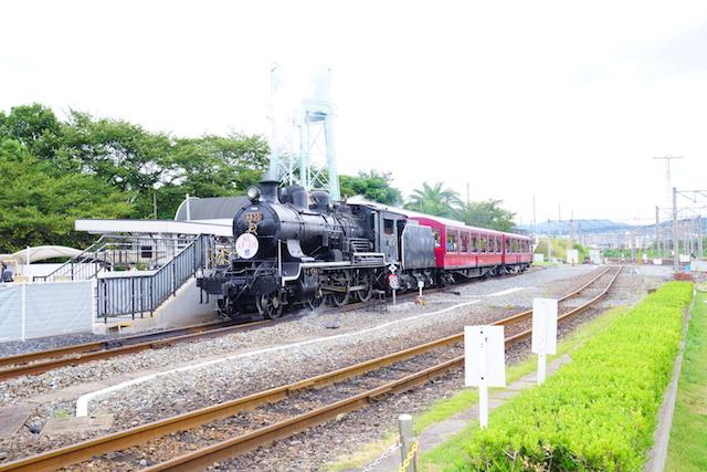 DSC05490.JPG
